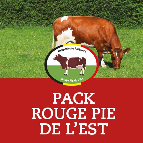 icones-pack-rouge-pie9